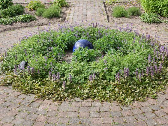 Begraven in eigen tuin