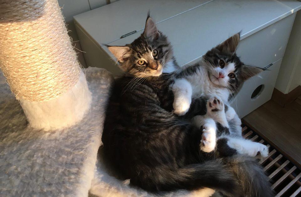 Yvi met haar broer